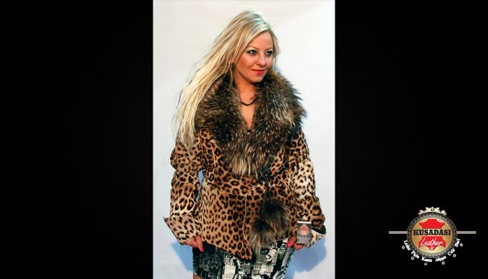 126_leopard1
